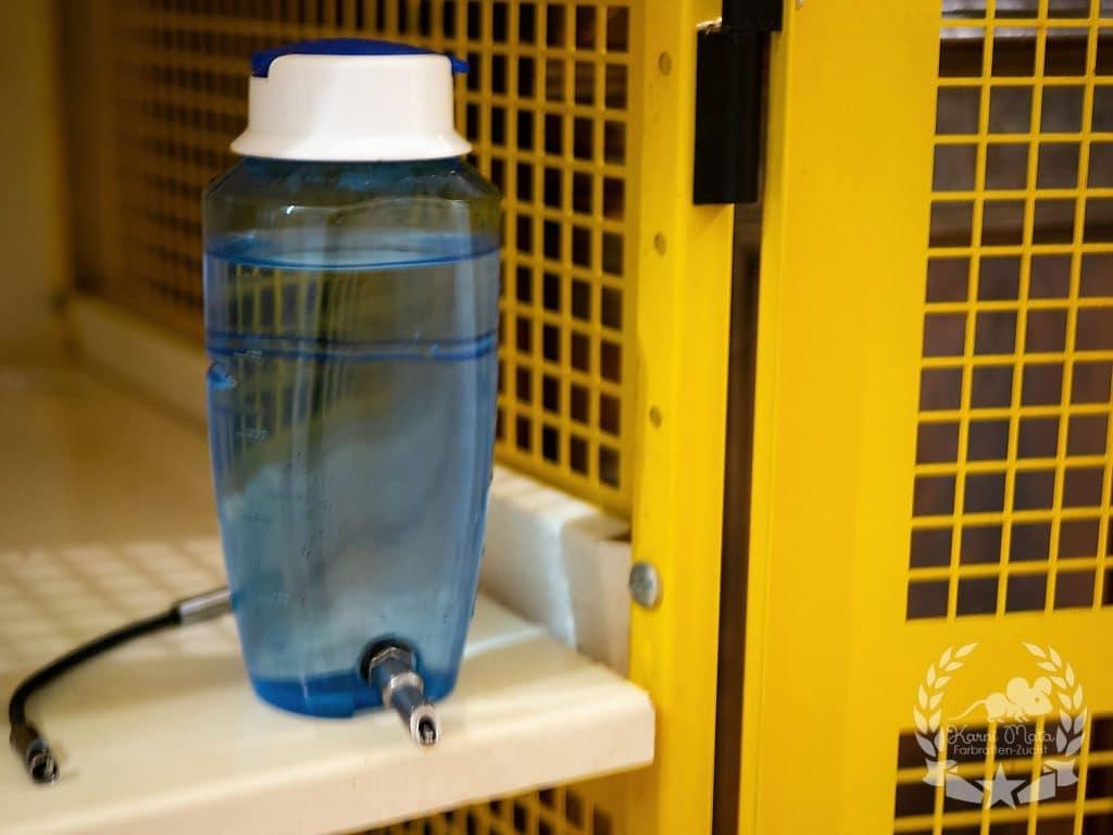 Bottle for rats: Savic Source nipple drinker